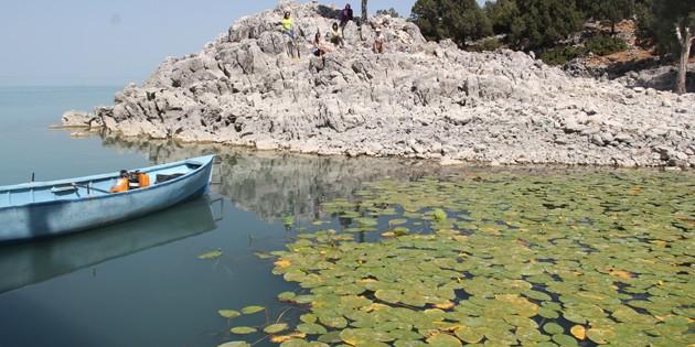 Doğaseverlere Beyşehir Gölü'ndeki Hacıakif Adası tanıtıldı