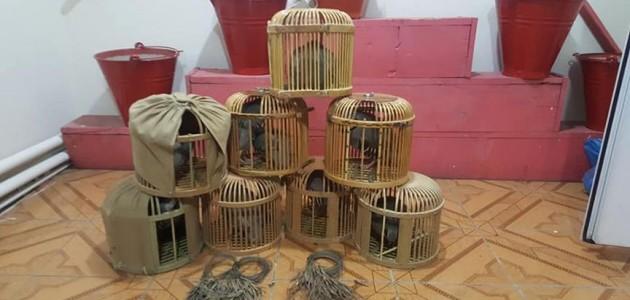 Kars'ta kaçak keklik avcılarına ceza