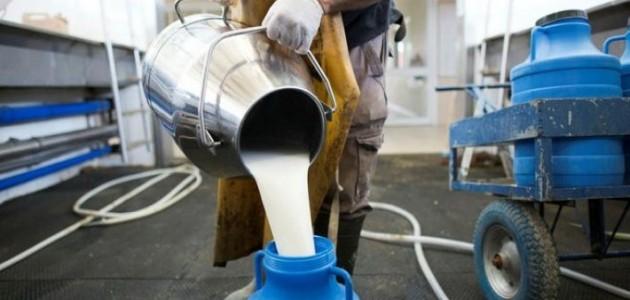 Çiğ süt desteklemelerine ilişkin esaslar belirlendi