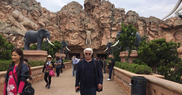 Sun City ve safari