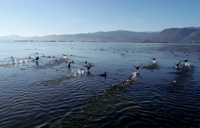 """Yeşil ve mavinin buluştuğu saklı cennet: """"Suğla Gölü''"""