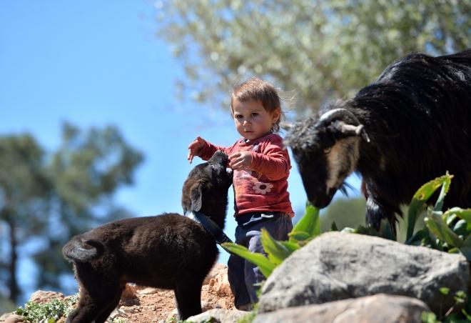 Sarıkeçililer zorlu şartları güçlü aile bağlarıyla aşıyor