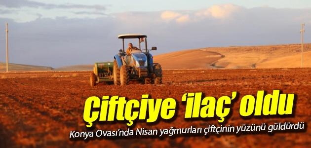 Konya Ovası'nda Nisan yağmurları çiftçinin yüzünü güldürdü