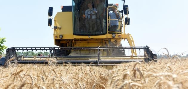 Bakan Pakdemirli  buğday hasadı yaptı: Çiftçimizi memnun etme yolunda adımları atmış olduk