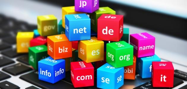Türkiye'nin İlk Domain Bayilik Sistemi