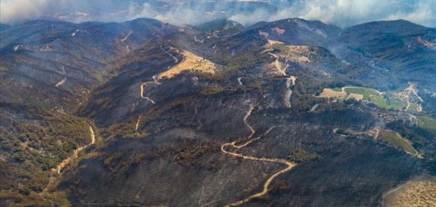 İzmir'de yanan ormanlık alanlar havadan görüntülendi