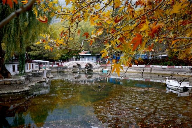 Kuğulu Milli Parkı sonbahar görüntüsüyle büyülüyor