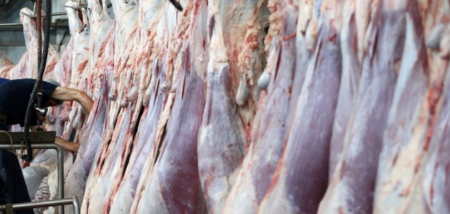"""ESK'nin 90 bin ton """"indirimli"""" eti tüketiciye ulaştı"""