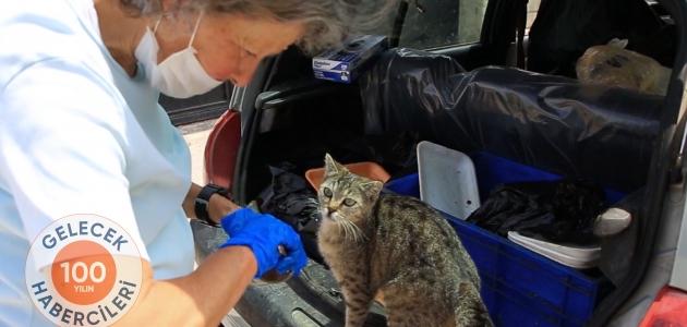 Emekli olduktan sonra hayatını sokak hayvanlarına adadı