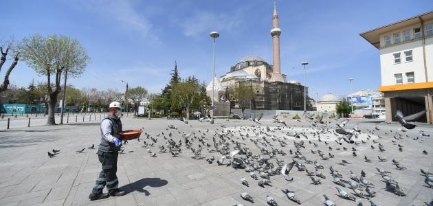 Konya'da sokak hayvanlarına yem bırakıldı