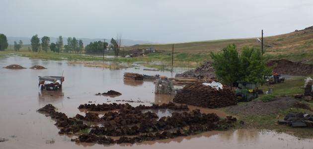 Sel felaketinde 50 hayvan telef oldu