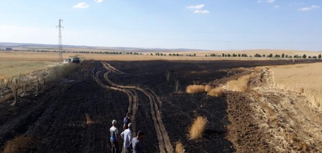 Kulu'da ekin ve mercimek tarlasında yangın