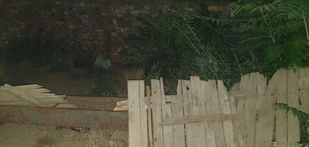 Bahçesinde Hint keneviri yetiştiren bir kişi gözaltına alındı