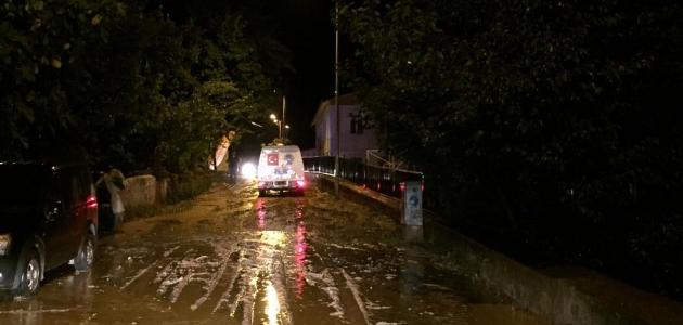 Artvin'de şiddetli yağış etkili oldu