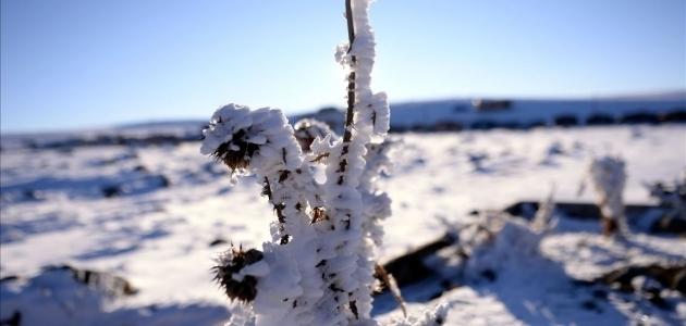 Doğu Anadolu'da en düşük sıcaklık sıfırın altında 13 dereceyle Erzurum ve Ağrı'da ölçüldü