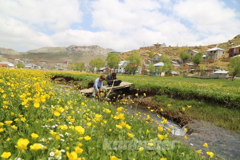 Toros Dağları'ndaki yaylalar, bahar aylarında bir başka güzel