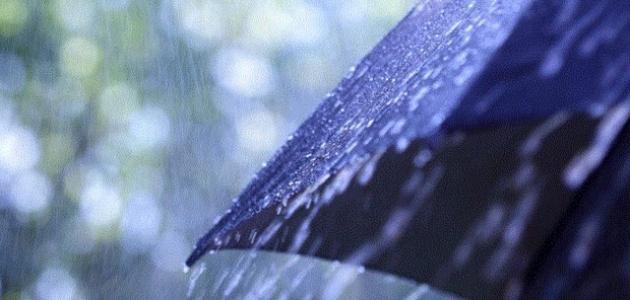 Yeni haftada bahar yağmurları görülecek