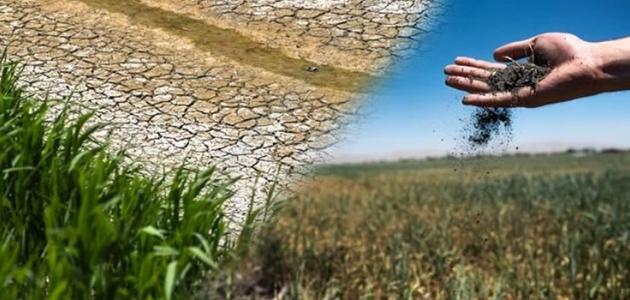 Konya Ovası yüzde 36,4 daha az yağış aldı