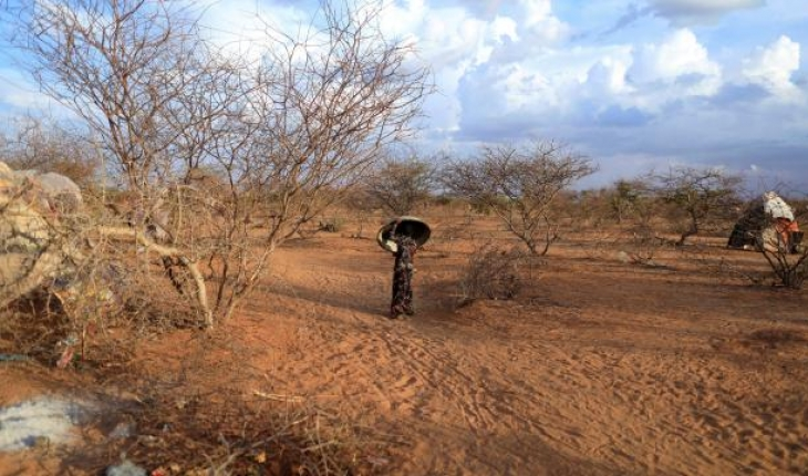 Madagaskar'da acil durum planı: Açlık ve kuraklıkla mücadele edilecek