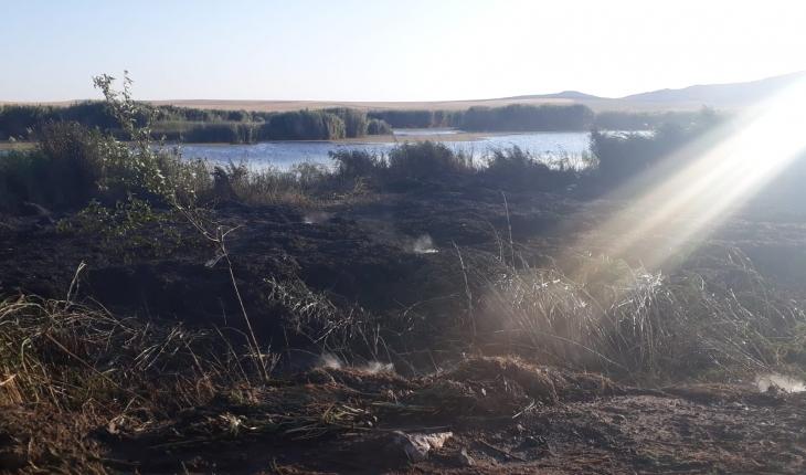 Kulu'da sazlık alanda yangın