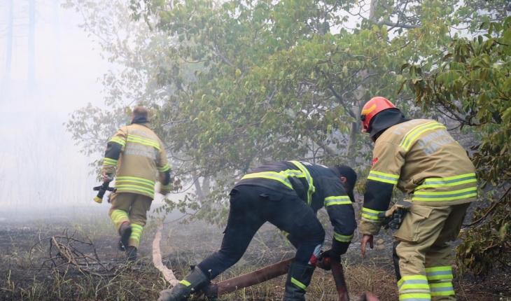 Jandarma 2 bin 310 personeliyle yangınla mücadele ediyor