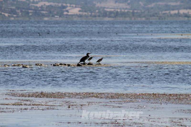 Beyşehir Gölü'nde su seviyesi düşünce adacıklar ortaya çıktı
