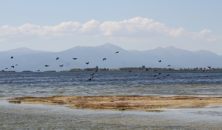 Beyşehir Gölü'nde su seviyesinin düşmesiyle adacıklar ortaya çıktı